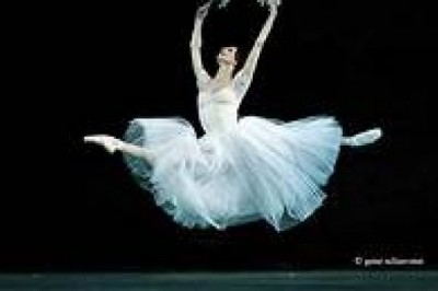 How well do you know Svetlana Zakharova, principal dancer of Bolshoi Ballet?